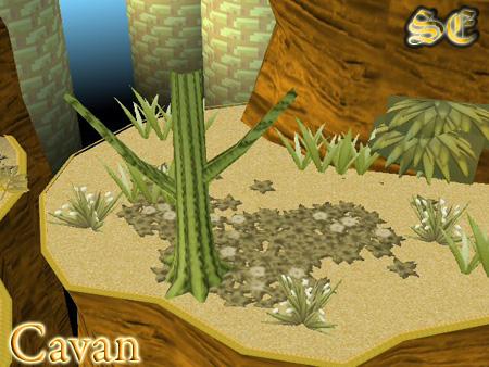 Desert Land III